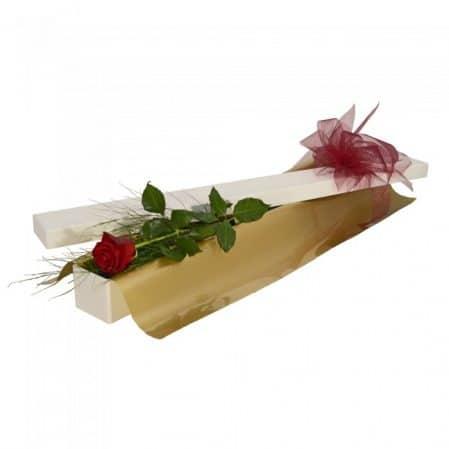 Single Rose in Box